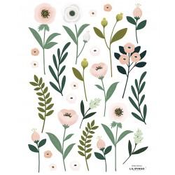Seinakleebised, lilled