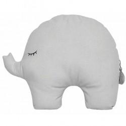 Padi hall elevant